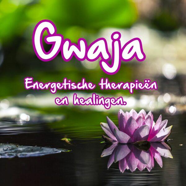 Gwaja